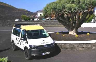 The North of Lanzarote