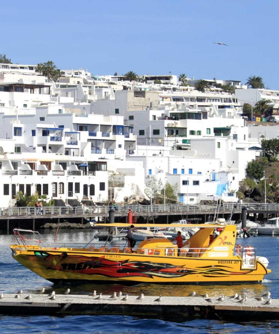 Boat Tour Dolphins & Los Lobos Lanzarote