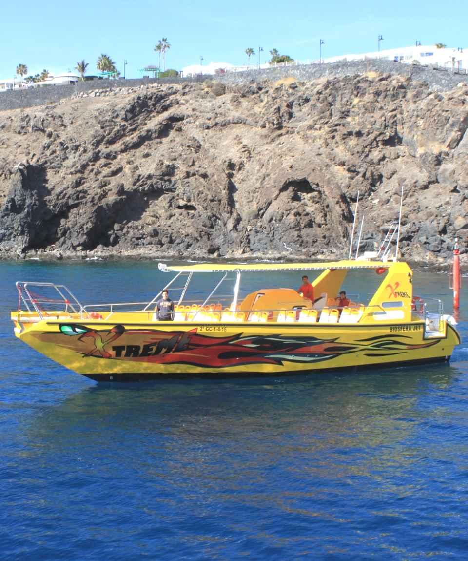 Mini Dolphin Tour Puerto del Carmen Lanzarote