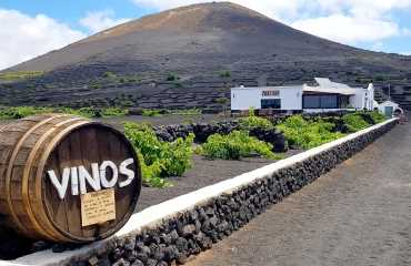The Flavours of Lanzarote