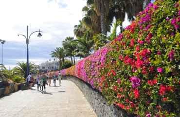 1,5 Hours Playa Blanca